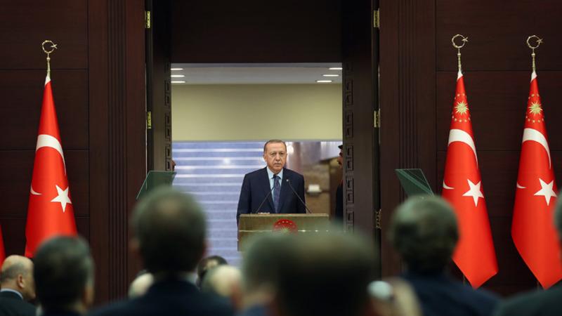 Эрдоган: Турция выйдет из ситуации с коронавирусом с минимальными потерями