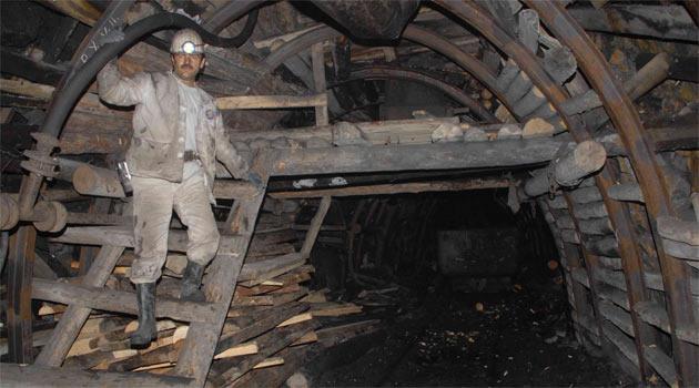 туалете шахта ждановская картинки хорошие собачки этой